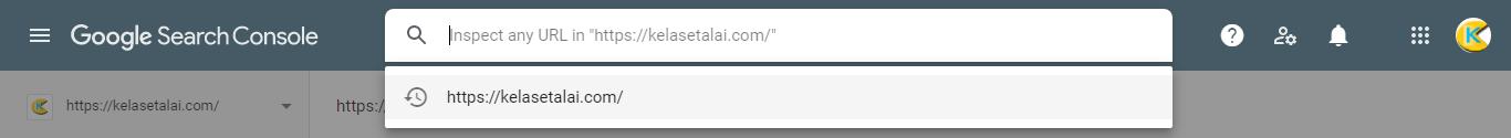 ابزار بازرسی URL